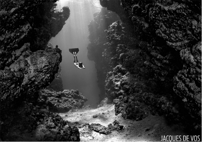 freediving experience